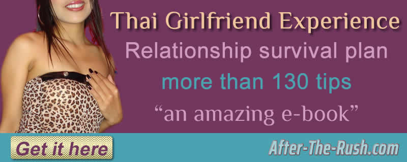 Thai girlfriend eBook download